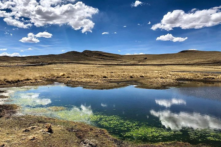 Bus from Puno to Chivay with stops, Puno, PERU