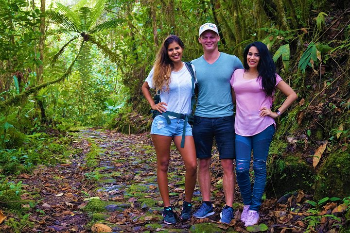 Tour Privado - Reserva Natural de Aves - Proaves (Caminatas/Senderismo), Bucaramanga, COLOMBIA