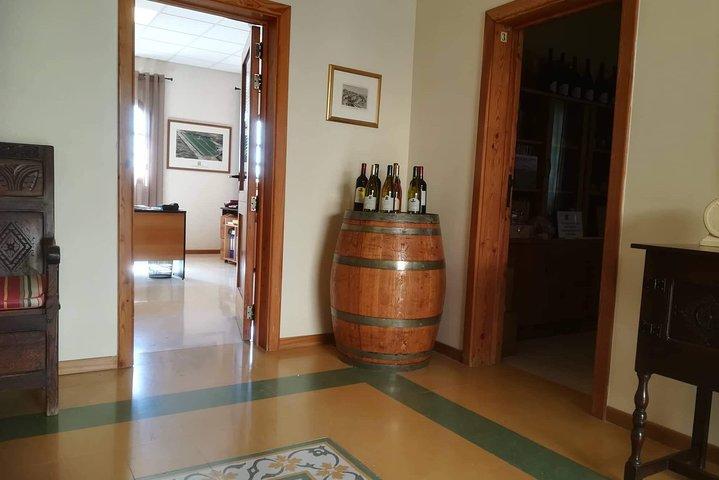 Roam through Dingli Cliffs, Mdina and finish off with a Wine Tasting Tour, Mellieha, MALTA