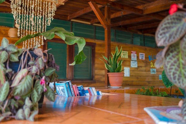 Spanish Lesson, Puntarenas, Costa Rica
