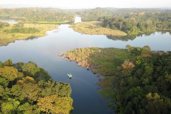Recorrido fotográfico por la selva tropical