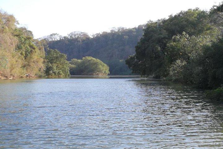 Mangrove Kayak, ,