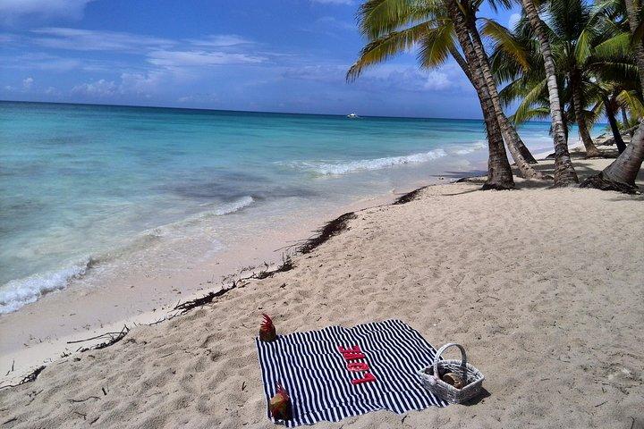 Saona Island Day Trip - Visit the paradise on earth, Punta de Cana, REPUBLICA DOMINICANA