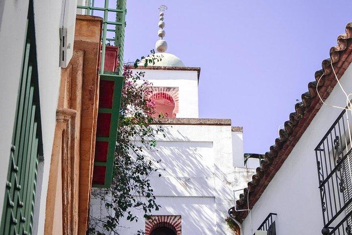 Best of Cordoba Guided Tour, Cordoba , ESPAÑA