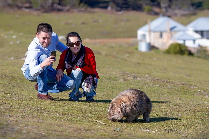 Wineglass Bay And Maria Island Wildlife Scenic Flight From Hobart, Hobart, AUSTRALIA