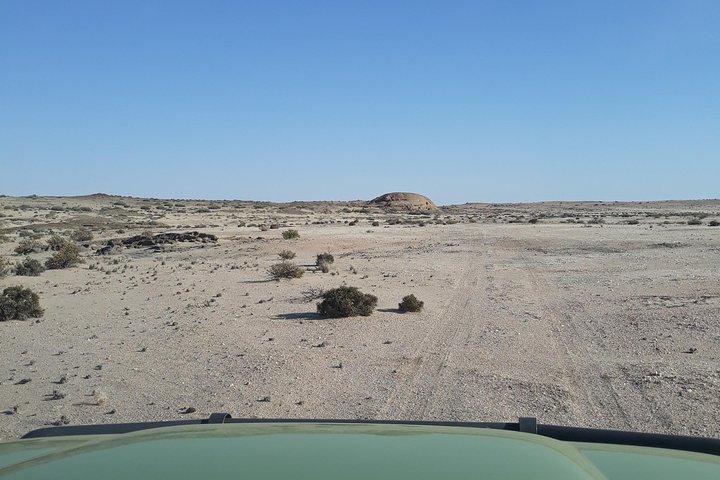Wonderful Welwitschia Goanikontes Moonlandscape Tour, Swakopmund, NAMIBIA