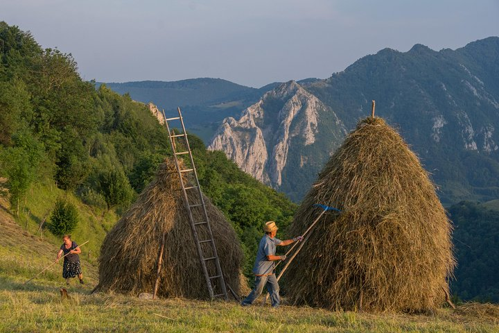 Private local experience from Brasov - Transylvanian villages and Bran Castle, Brasov, RUMANIA