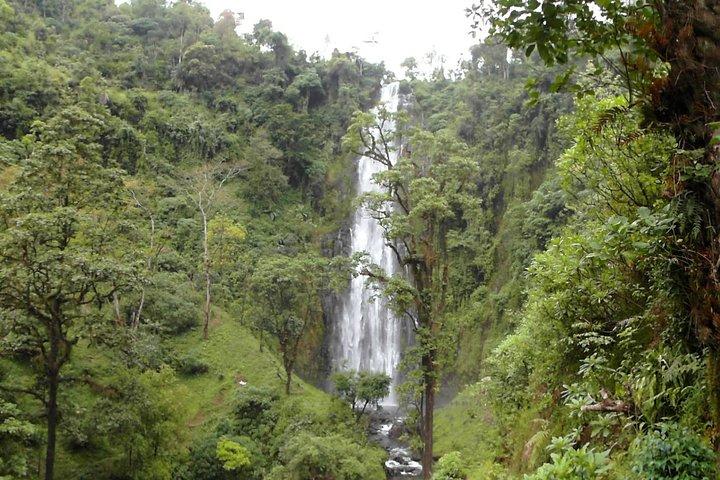 Materuni Waterfalls & Coffee Tour from Moshi, Arusha, TANZANIA