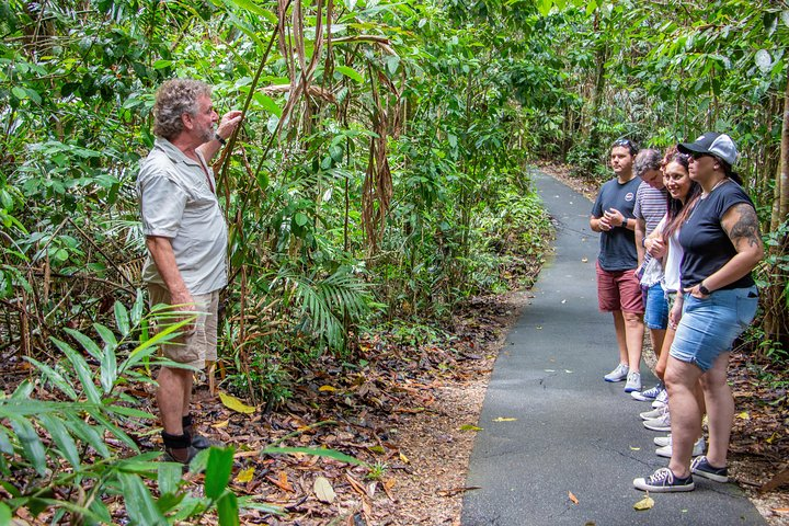 Wooroonooran National Park Rainforest and Wildlife Day Trip from Cairns, ,