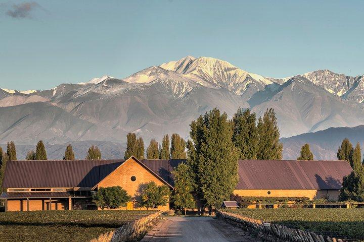 Lujan – Maipu, Tierra de Malbec, Mendoza, ARGENTINA