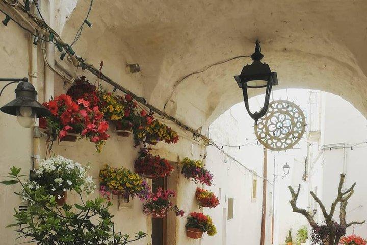 Visit of Locorotondo and tasting, Alberobello y Locorotondo, ITALIA
