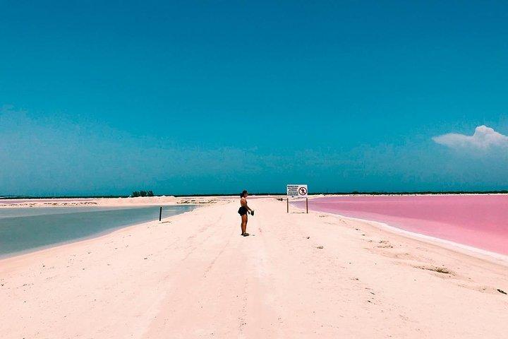Excursion Las Coloradas from Cancun & Playa del Carmen, Tulum, Mexico