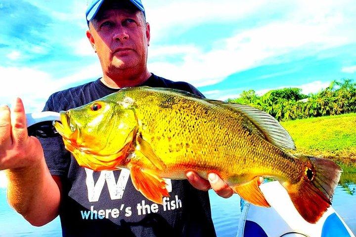 Peacock Bass Fishing Trips near Boca Raton, Boca Raton, FL, ESTADOS UNIDOS