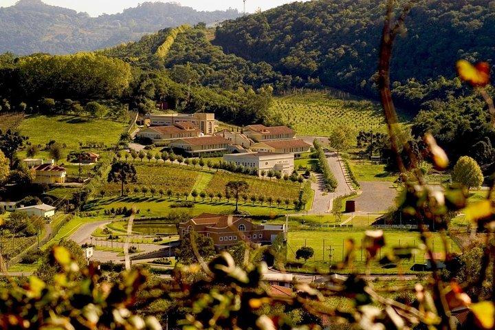 Tour Vinhas E Vale Dos Vinhedos, Gramado, BRASIL