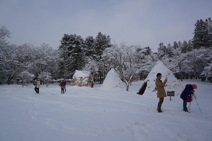 Private Tour Nami Island with Petite France or The Garden of Morning Calm, Seul, South Korea