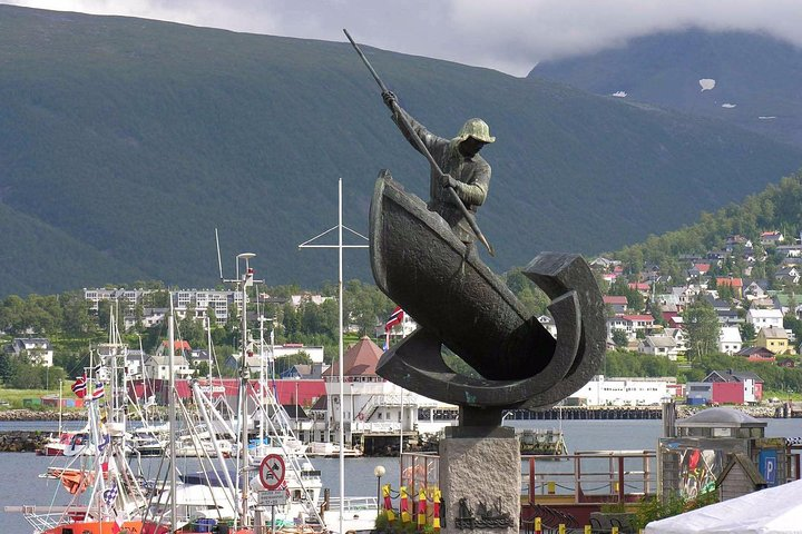Private 5 to 7 hours Northern Lights Tour in Tromsø with hotel pick up, Tromso, NORUEGA