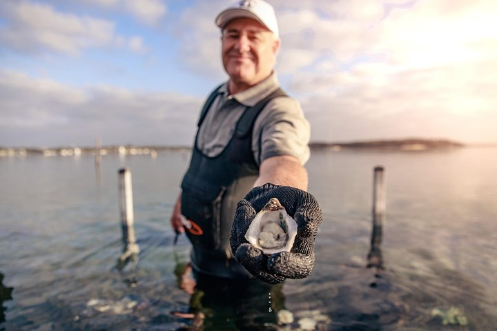 Coffin Bay Oyster Farm & Tasting Tour, Port Lincoln, Austrália