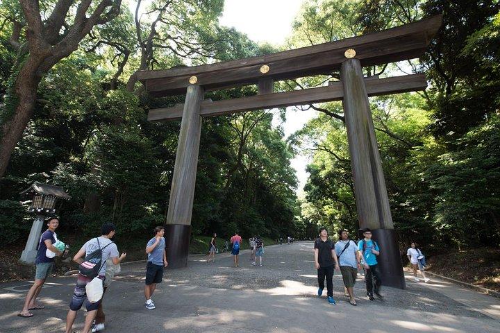 1 día de tour privado a medida, en Tokio, Tokyo, JAPON