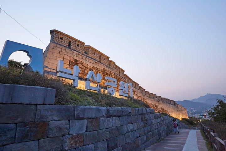 Seoul Night Tour: Sevit Some, Fountain, and Palace, Seul, COREIA DO SUL