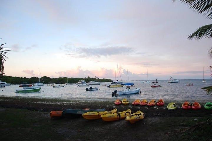 Bioluminescent Bay Night Kayaking 6:00pm | Transportation from San Juan, Luquillo, PUERTO RICO
