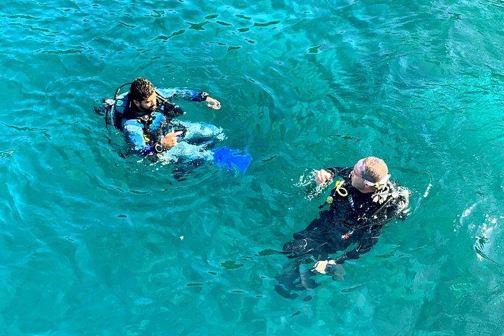 Brazil's Best Scuba Diving: Day Trip to Arraial do Cabo from Rio, Rio de Janeiro, BRASIL