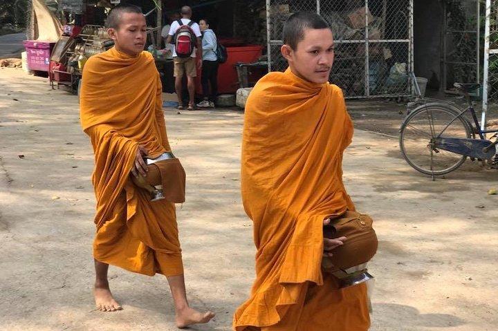 Full day tour :bamboo train ,killing cave&bat cave,village life&test local snack, Battambang, CAMBOYA