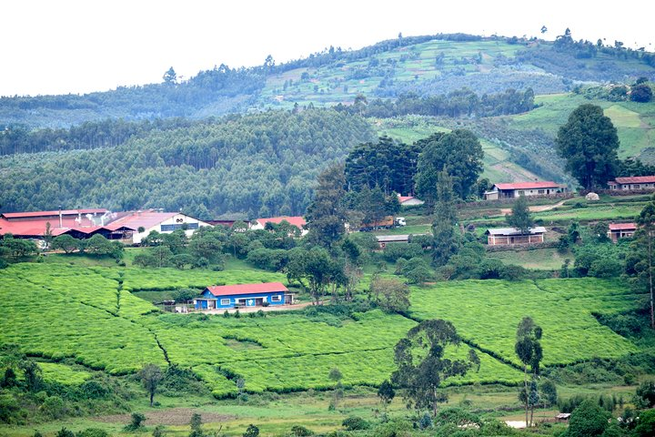 Burundi Day Trip to Karera Waterfalls- Source of Nile-Gitega National Museum, Buyumbura, BURUNDI