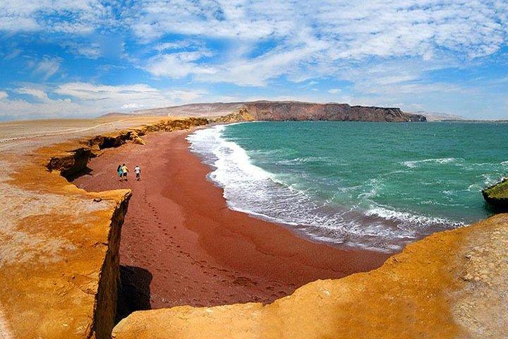 Excursion Paracas National Reserve and Tambo Colorado from Port the San Martín, Paracas, PERU