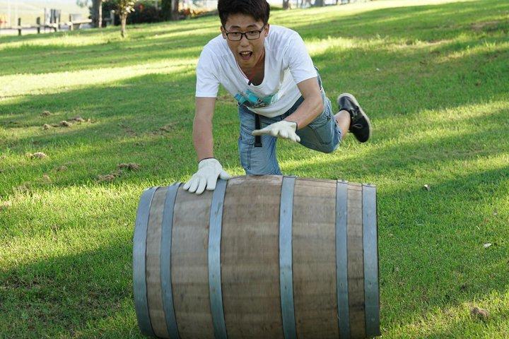 Hunter Valley Wine Barrel Rolling, Hunter Valley, Austrália
