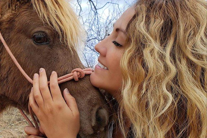 Scenic Horseback Adventure, Flagstaff, AZ, ESTADOS UNIDOS
