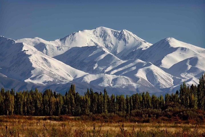Bodegas Mendocinas -Maipu-Lujan-Valle del Uco, Mendoza, ARGENTINA