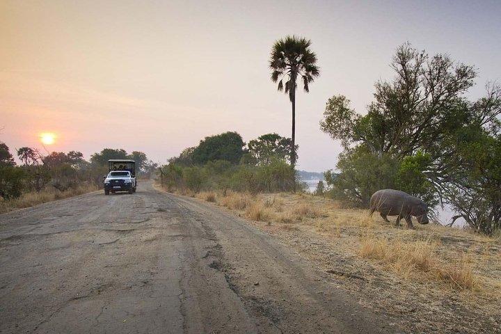 Game Drive in Mosi-Oa-Tunya National Park, Livingstone, ZIMBABUE