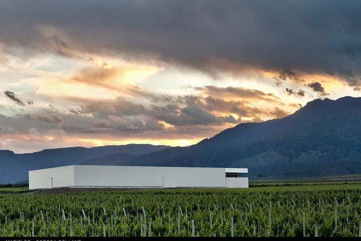 """A day in """"Clos de los Siete"""":, Mendoza, ARGENTINA"""