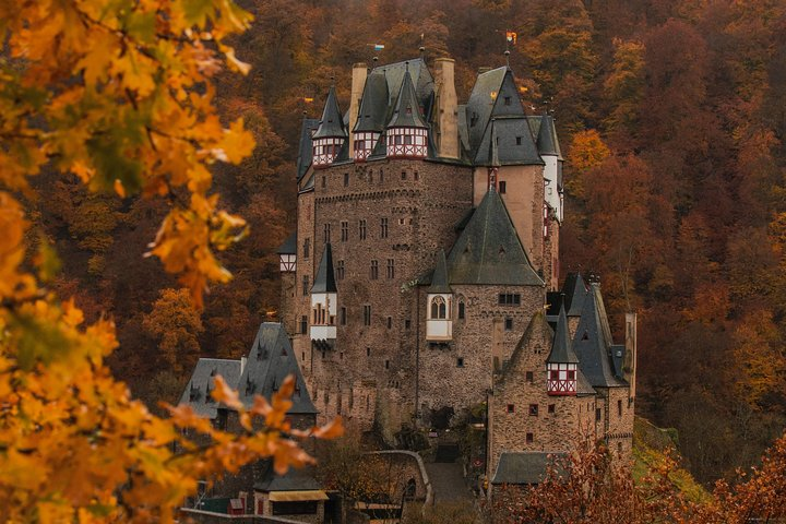Visit your ancestral homeland, Estrasburgo, França