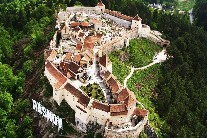 Tour to Dracula's Castle and Bear Sanctuary Brasov, Brasov, RUMANIA