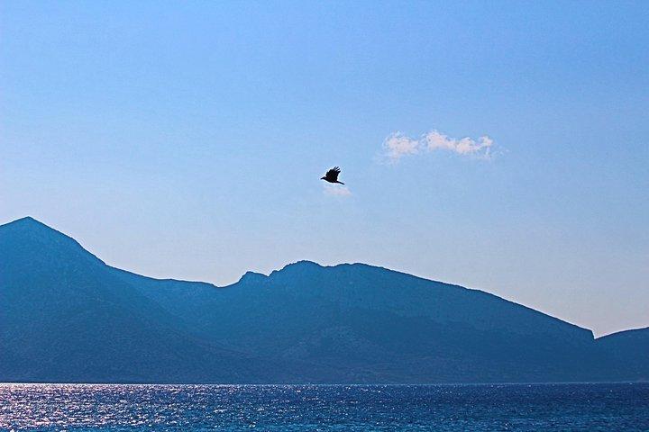 Private Tour: Mykonos Island in Half a Day, Miconos, GRECIA