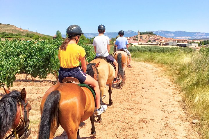 Horseback riding through the vineyards of the Rioja Wine Country, La Rioja, ARGENTINA