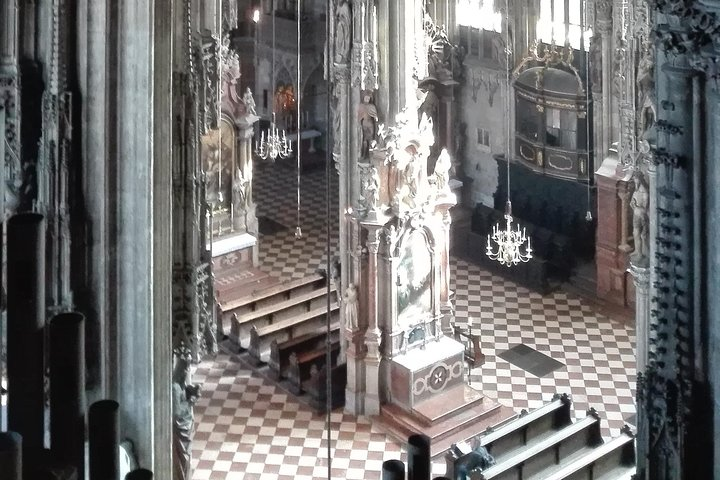 La catedral de San Esteban con SaFu - Símbolo viejo descubierto de nuevo, Viena, AUSTRIA