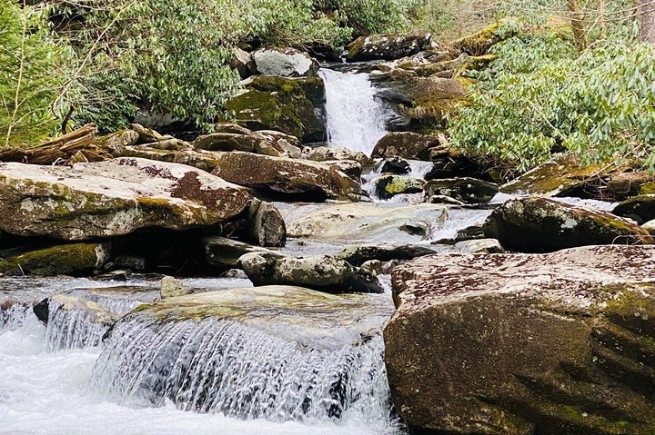 Thundering Streams and Falls of the Smokies Guided Hiking Tour, Gatlinburg, TN, ESTADOS UNIDOS
