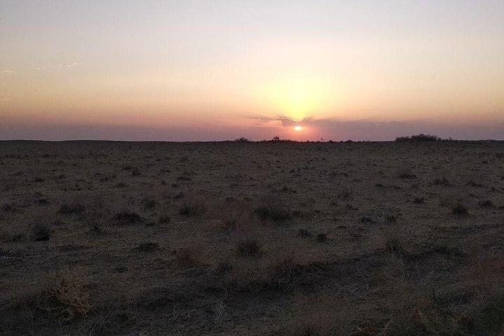 Exotic Tour and Camel Riding, Samarcanda, UZBEKISTAN