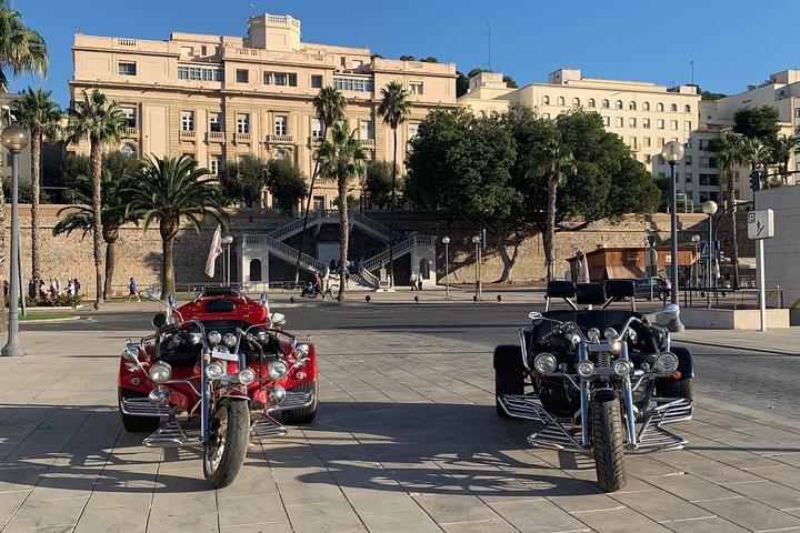 Luxury Rewaco Trike