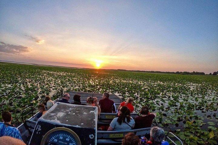 1-Hour Sunset Airboat Ride, Orlando, FL, ESTADOS UNIDOS