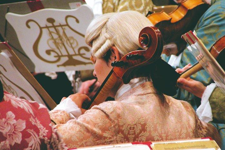 Noche de Mozart en Viena: Cena gourmet y concierto en el Musikverein, Viena, AUSTRIA