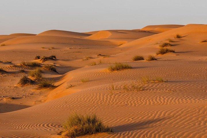 Desert Safari Sharing Tours, Mascate, OMAN