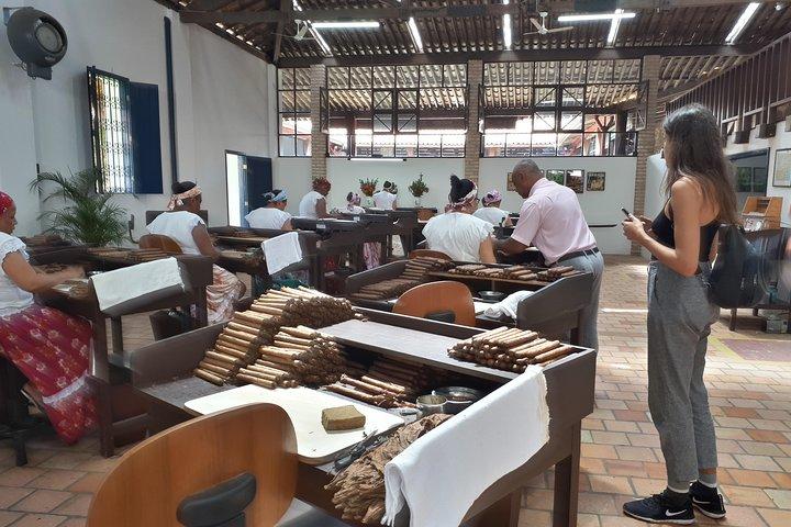 Ivan Bahia, Recôncavo Baiano: Cachoeira & Coqueiros incl. mangrove-trip + lunch, Salvador de Bahia, BRASIL