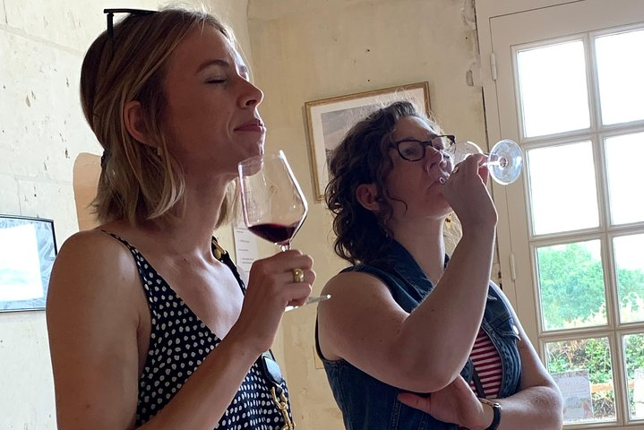 English speaking vineyards tours in the Loire Valley (Chinon, Saumur, Bourgueil), Chinon, França