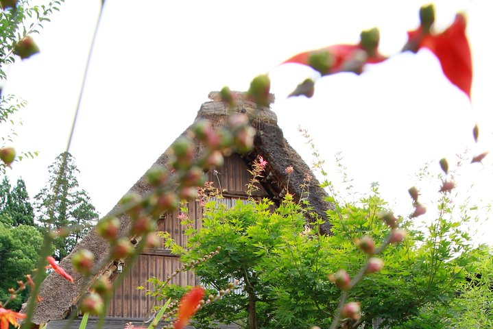Kanazawa and Shirakawago Tour (Private 2 Days), Kanazawa, JAPON