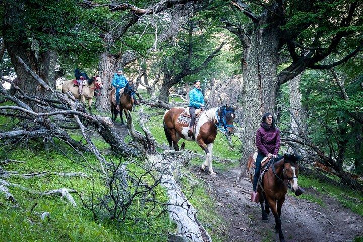 Cabalgatas Bonanza - El Chalten, El Chalten, ARGENTINA