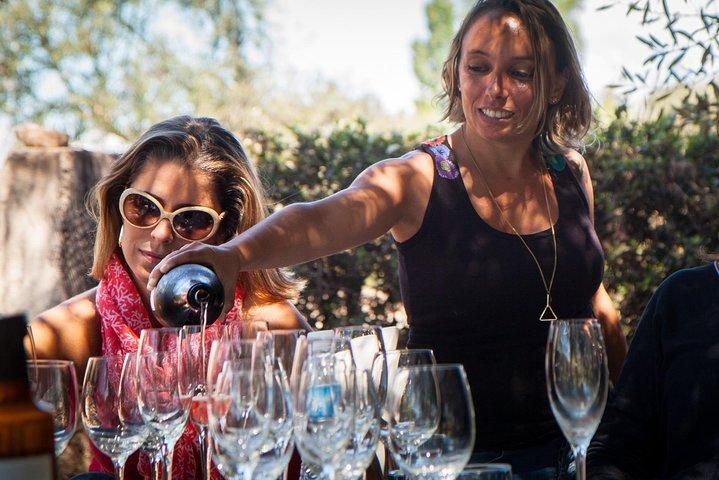 Enólogo: tour exclusivo de vinos con almuerzo gourmet, Mendoza, ARGENTINA