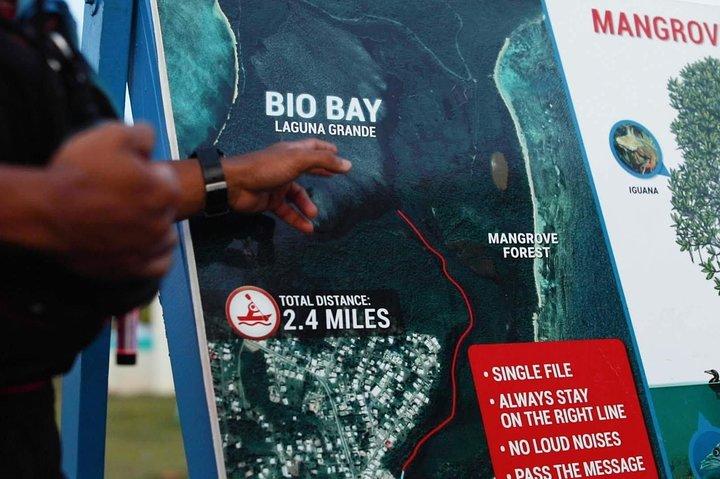 Bio Bay Kayak Tour in Fajardo, ,